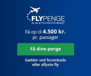 Fly erstatning